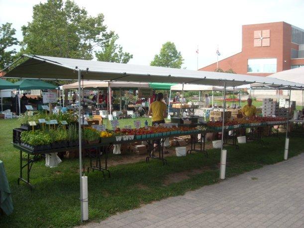 markets 004